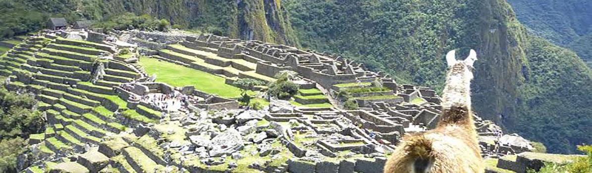 La magie des Incas