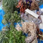 Des plantes sacré(es)ment utiles