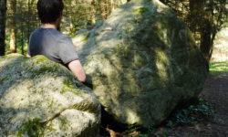 Druides d'Auvergne